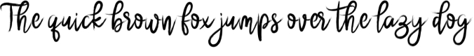 Brushnyoe Font Preview