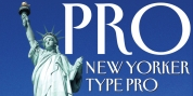 New Yorker Type Pro font download