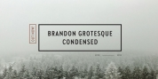 Brandon Grotesque Condensed font download