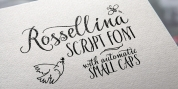 Rossellina font download