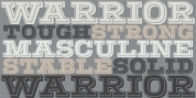 Warrior font download