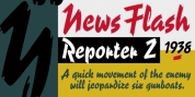 Reporter font download