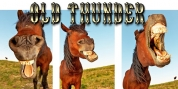 Old Thunder font download