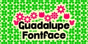 Guadalupe font download