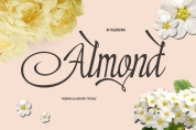 Almond font download