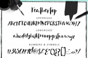 Feathertop font download