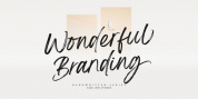 Wonderful Branding font download