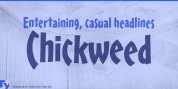 Chickweed font download
