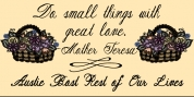Austie Bost Rest of Our Lives font download