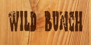 Wild Bunch font download
