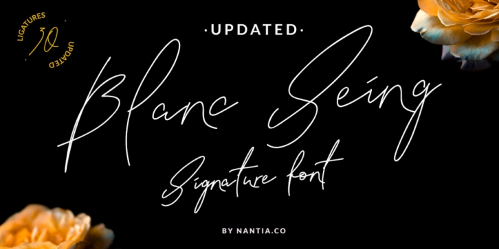 NF-Blanc Seing font preview