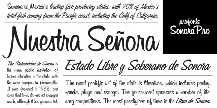 Sonora font preview