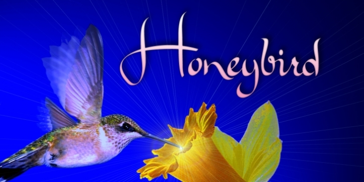 Honeybird font preview