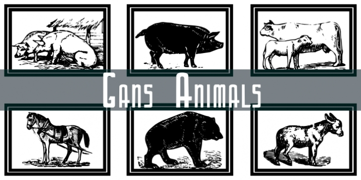 Gans Animals font preview