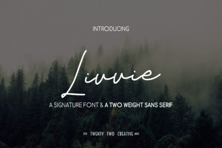 Livvie Duo font preview